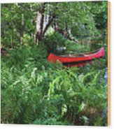 Red Canoe In The Adk Wood Print