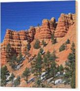 Red Canyon Hoodoos Wood Print