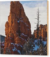 Red Canyon Sentinel Wood Print