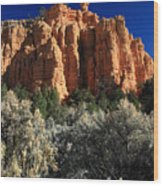 Red Canyon State Park In Utah Wood Print