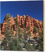 Red Canyon State Park Wood Print