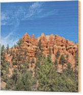 Red Canyon Tableau Wood Print