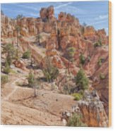 Red Canyon Trail Wood Print