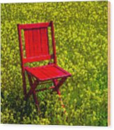Red Chair Amoung Wildflowers Wood Print