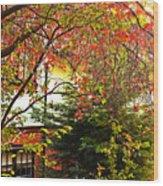 Red Charm Wood Print