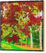Red Chinese Maple Leaf's Wood Print