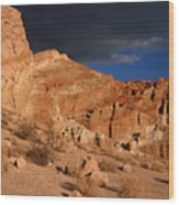 Red Cliffs Natural Preserve Wood Print