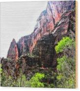 Red Cliffs Zion National Park Utah Usa Wood Print
