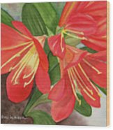 Red Clivias - Watercolor Wood Print