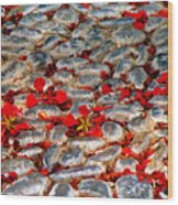 Red Cobblestone Road Wood Print