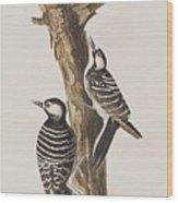 Red-cockaded Woodpecker Wood Print