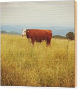 Red Cow On The Blue Ridge Wood Print