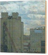 Red Crane Wood Print