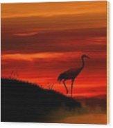 Red Crowned Crane At Dusk Wood Print