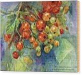 Red Currants Berries Watercolor Wood Print