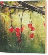 Red Currants Wood Print