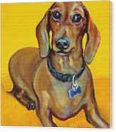 Red Dachshund - Tigger Smiles Wood Print