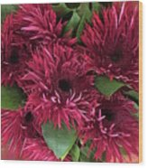 Red Daisies Bouquet Wood Print
