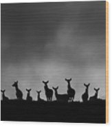 Red Deer On The Hill Wood Print