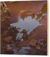 Red Desert Wash Wood Print