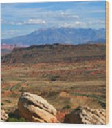 Red Desert With La Sal Mountains Wood Print