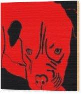 Red Dog Wood Print