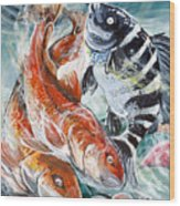 Red Drums And A Sheephead Wood Print by Jenn Cunningham