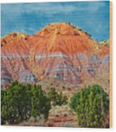 Painted Red Earth Wood Print