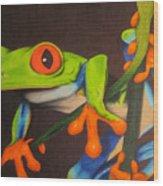 Red Eye Tree Frog Wood Print