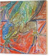 Red Eyed Iguana Wood Print