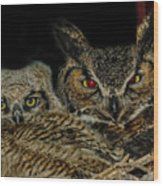 Red Eyed Mama And Baby Horned Owls Wood Print