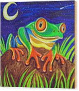 Red-eyed Tree Frog And Starry Night Wood Print
