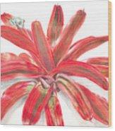 Red-eyed Tree Frog On Bromeliad Wood Print