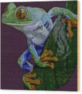 Red Eyed Tree Frog Original Oil Painting 4x6in Wood Print