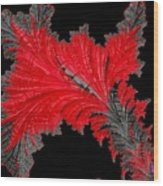 Red Feather - Abstract Wood Print