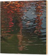 Red Fishes In A Pond Pictorial II Wood Print