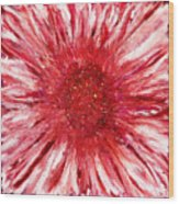 Red Flame Wood Print