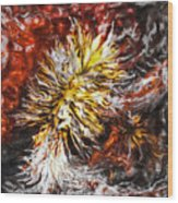 Red Flame Yucca Wood Print