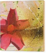 Red Floral Grunge Wood Print