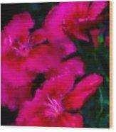 Red Floral Study Wood Print by David Lane