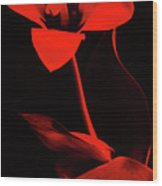 Love For Red Flower #1. Wood Print