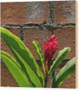 Red Flower Iv Wood Print