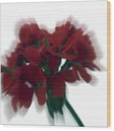 Red Flower Motion Wood Print