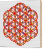Red Flower Of Life Wood Print