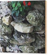 Red Flowers And Rocks Wood Print