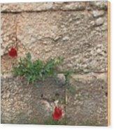 Red Flowers In Ruins Wood Print