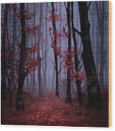 Red Forest 2 Wood Print