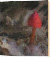 Red Forest Mushroom Wood Print
