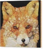 Red Fox Abstract Wood Print