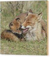 Red Fox Cub Love Wood Print